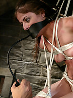 Swiss miss finds herself in an uncomfortable suspension