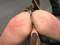 Delilah Strong in Forced exercise and fuck training