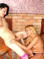 Lusty shemale in patterned socks getting her ass strap-on fucked in café