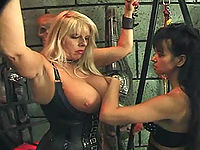 Busty blonde babe gets to feel bondage