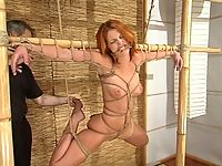 Ivy and Torque exhibit flogging candle and single tails pain.