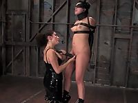 Young brunette gets tied up zapped and forced to cum