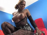 Busty black shemale in transparent stockings poses